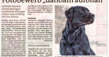 """Fotobewerb """"dahoam aufblian"""" Siegerfoto Auerbach"""