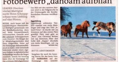 """Fotobewerb """"dahoam aufblian"""" Siegerfoto Eggelsberg"""