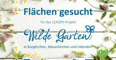 Wilder Garten - Blühflächen und Naturerlebnis