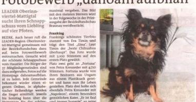 "Fotobewerb ""dahoam aufblian"" Siegerfoto Franking"