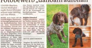 "Fotobewerb ""dahoam aufblian"" Siegerfoto Helpfau-Uttendorf"