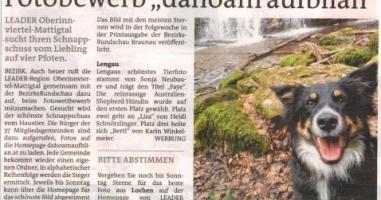 "Fotobewerb ""dahoam aufblian"" Siegerfoto Lengau"