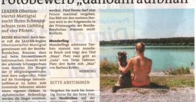 """Fotobewerb """"dahoam aufblian"""" Siegerfoto Munderfing"""