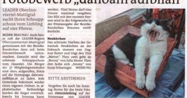 """Fotobewerb """"dahoam aufblian"""" Siegerfoto Neukirchen"""