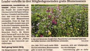 """""""Wilde Gärten"""" blühen auf"""