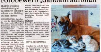 """Fotobewerb """"dahoam aufblian"""" Siegerfoto Pfaffstätt"""