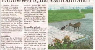 """Fotobewerb """"dahoam aufblian"""" Siegerfoto Schwand"""