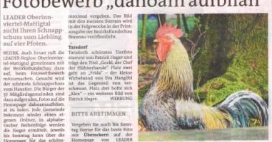 """Fotobewerb """"dahoam aufblian"""" Siegerfoto Tarsdorf"""