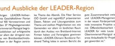 Rück- und Ausblick der LEADER-Region