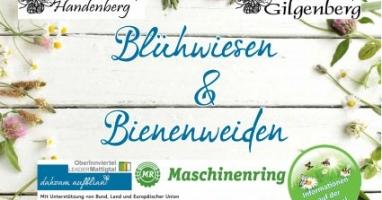 Blühwiesen und Bienenweiden in Gilgenberg und Handenberg