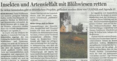 Insekten und Artenvielfalt mit Blühwiesen retten