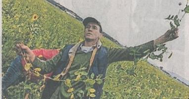 Der Landwirt