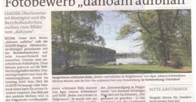 Das schönste Foto aus Haigermoos