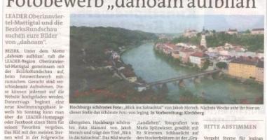 Hochburgs schönstes Foto wurde gewählt!