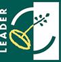Leader Webseite